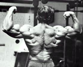 arnold schwarzenegger muscle pictures picture 1