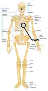 liver pain that goes above my rib cage picture 15