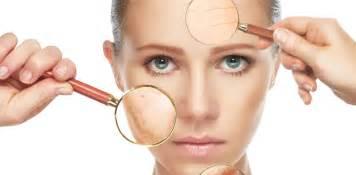 skin pores picture 6