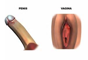 do penis insertions cause infection picture 15