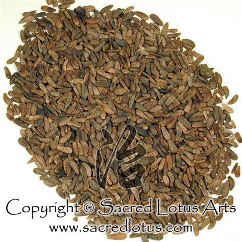 da-ge herbal picture 6