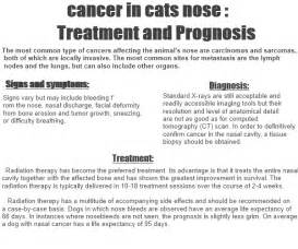 herpes and treatment and prognosis picture 2