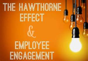 the hawthorn effect picture 14