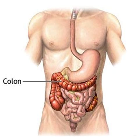 healthy colon body cleanse picture 1