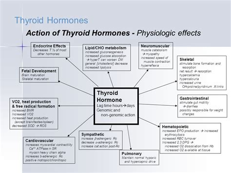 effects of carbonated soda on thyroid function picture 5