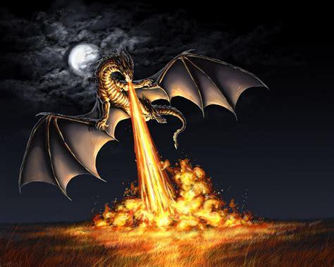 dragon picture 10