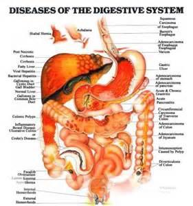 colon cleanse naturalcures picture 1
