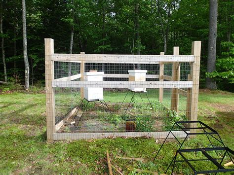 Honey bee hives picture 3