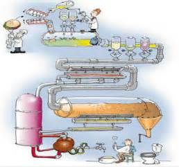 chemical digestion picture 19