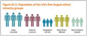 effect of aging on ethnic minorities picture 9