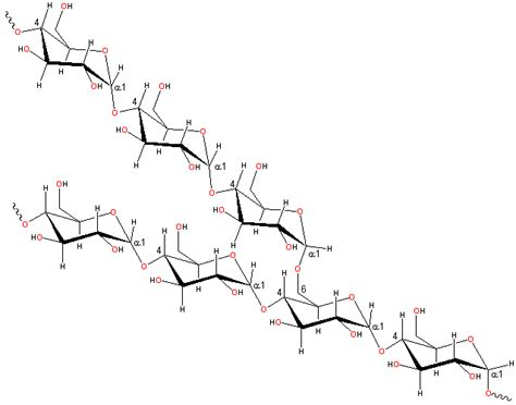 chemical structure of starch picture 18