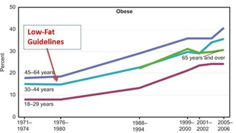 Cholesterol obesity picture 3