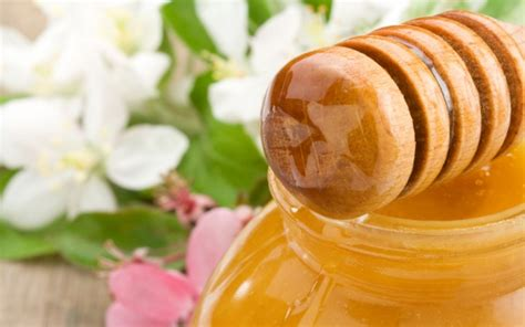 manuka honey for celiac disease picture 18