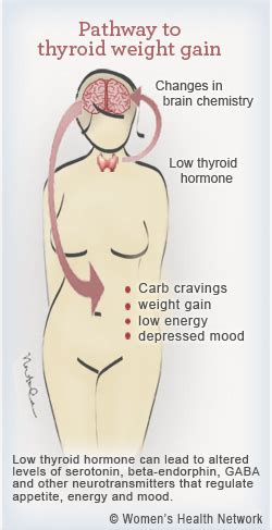 women with low thyroid levels weight loss success picture 11
