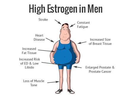 does chamomile tea affect estrogen level picture 3