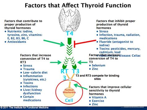 why do thyroid problems cause palpitations picture 8
