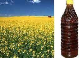 long ka oil picture 6