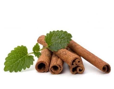 chinese herbal medicines cinnamon and peoria picture 3