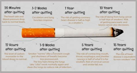 body when you quit smoking picture 3