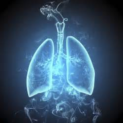 smoke in the lungs picture 2