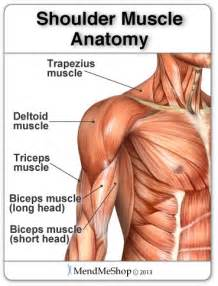 muscle spasms and pain in upper shoulder and picture 3