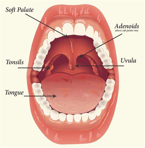 swollen lymph nodes after surgery? picture 11