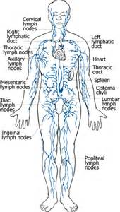ibs relief system medicine picture 14