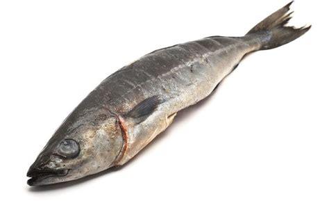 black market cod bandung picture 18