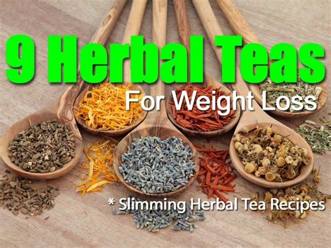 herbal weight loss teas picture 5