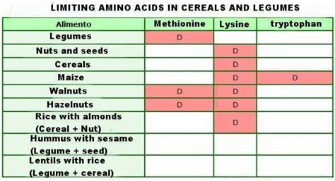 what foods with amino acids and enzemes make picture 10