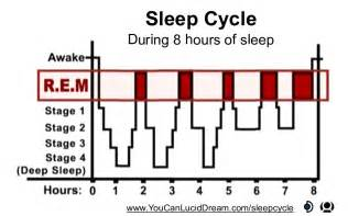 rem sleep picture 1