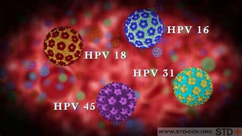 human papillomavirus is it curable picture 3