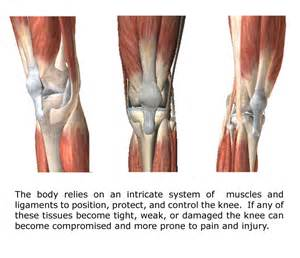 can paxil cause muscle and joint pain picture 18