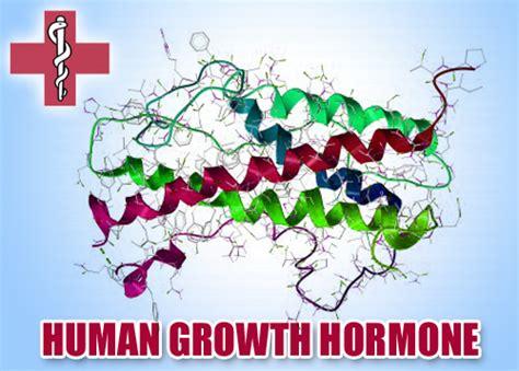 apotek human growth hormone picture 9