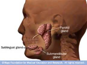 gland jaw joint pain picture 2