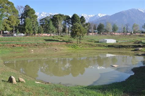 contact no of callgirl in palampur hp picture 3
