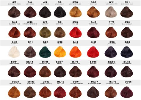 clairol professional hair color picture 14