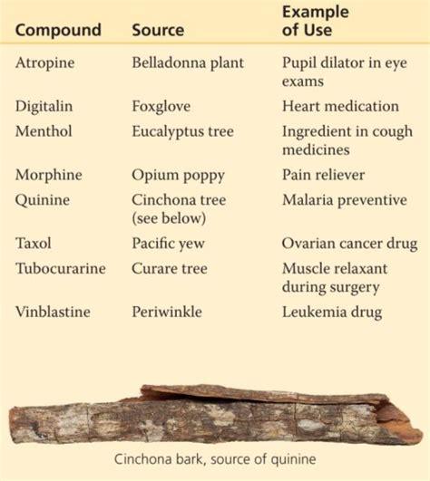 medicines picture 3