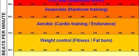 Fat burning cardio picture 13