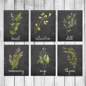 what herbs un your ateries picture 18