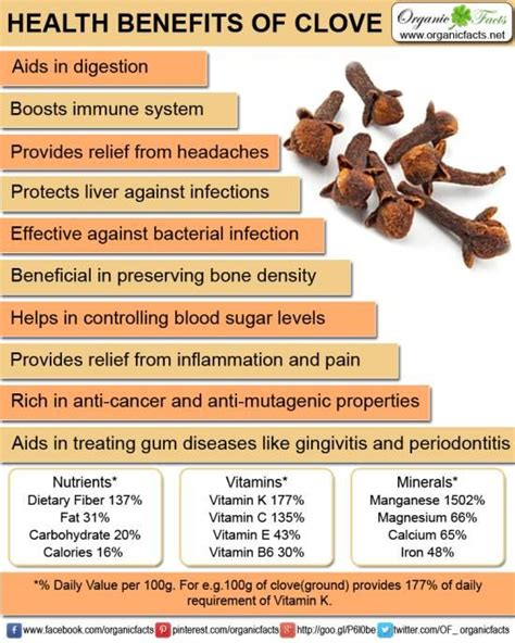 clove oil benefits weight loss picture 3