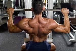 testosterone nation biggest natural bodybuilder picture 7