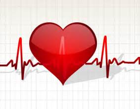 fast heart beat and reloramax picture 11