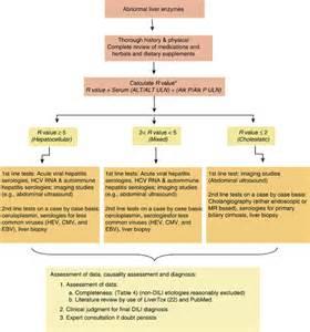 symptoms of drug induced liver damage picture 2