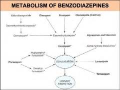 anesthesia and liver enzymes picture 5