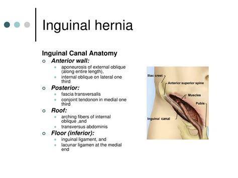 female doctors examining male patients for inguinal hernias picture 7