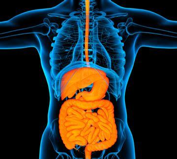 gastro intestinal diseases picture 2