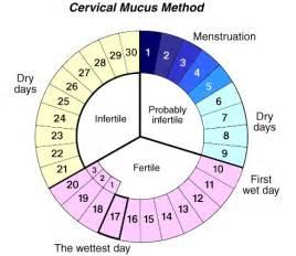 calendar method para mabuntis picture 5