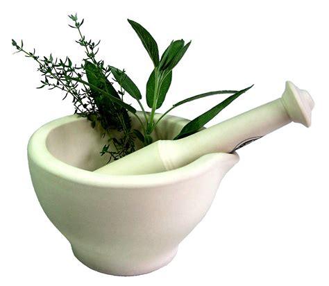 herbal medicines picture 15