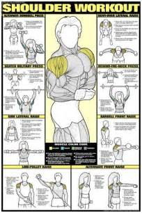 muscle building exercises picture 14